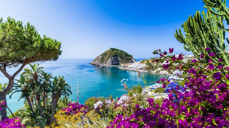 Colourful flowers and trees in Ischia, Italy