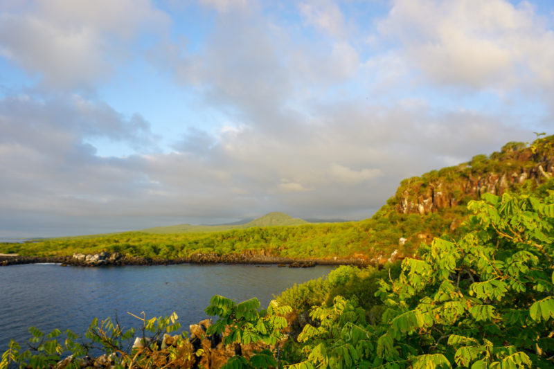 Galapagos islands travel tips