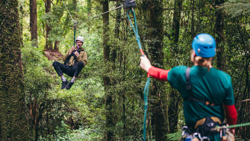 Traveller zip lining in Rotorua rainforest