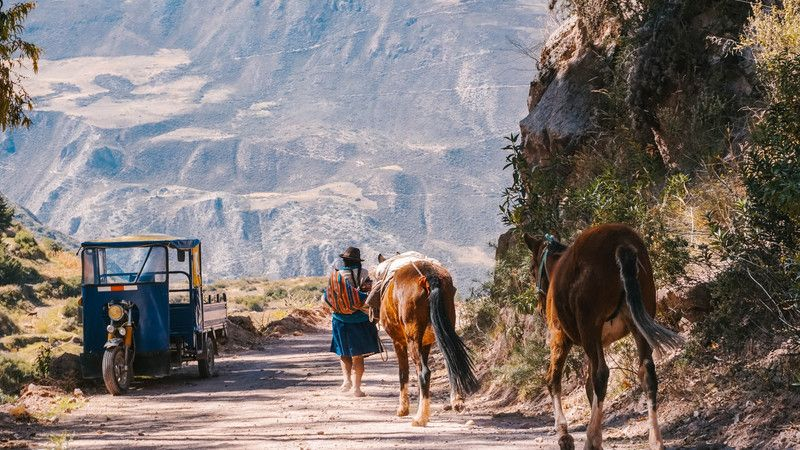 A woman leads two horses on the Quarry Trail