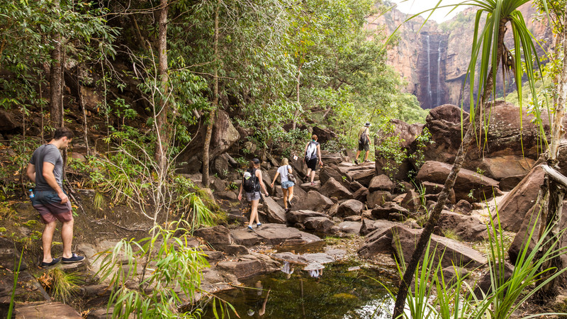 Travellers hiking in the Top End.