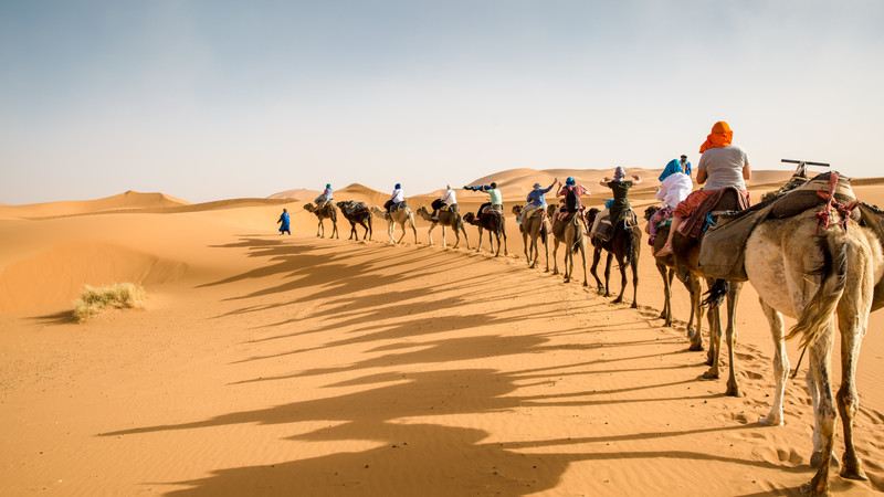 Travellers riding camels in the Sahara