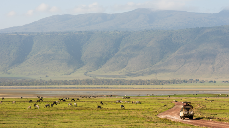 Driving across the Ngorongoro Crater, Tanzania
