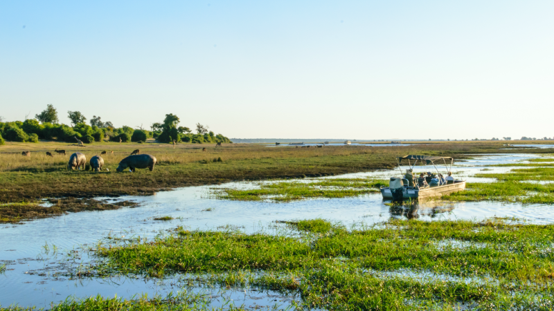 River cruise in Chobe National Park, Botswana