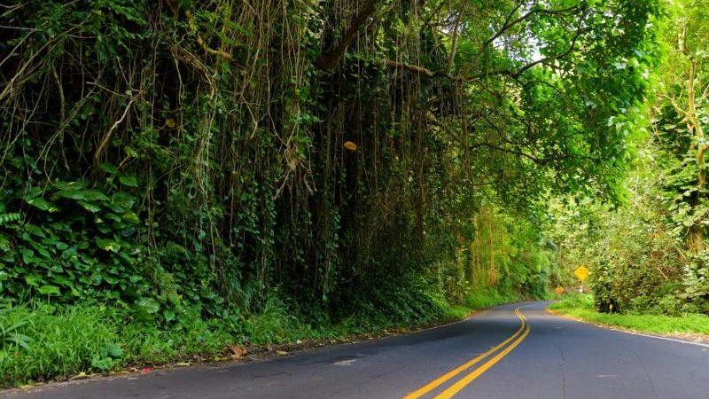 Road to Hana, Hawaii