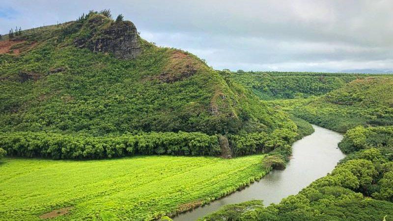 Wailua River, Kaua'i, Hawaii