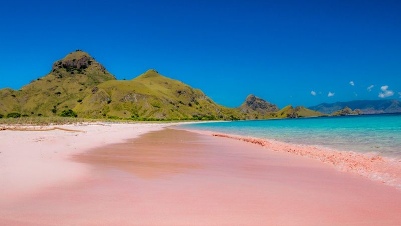 Pink Beach on Komodo Island, Flores