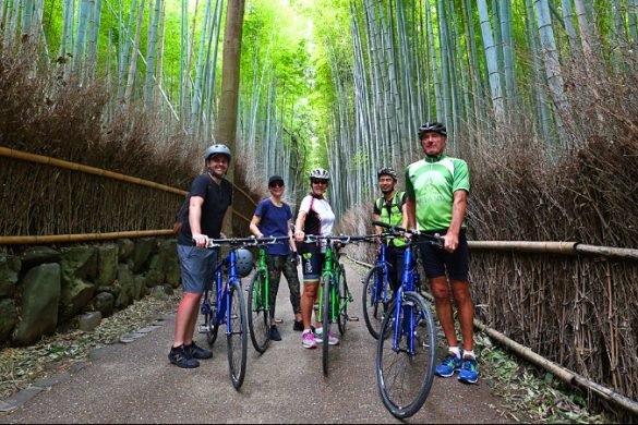 A group of cyclists in a bamboo forest in Japan
