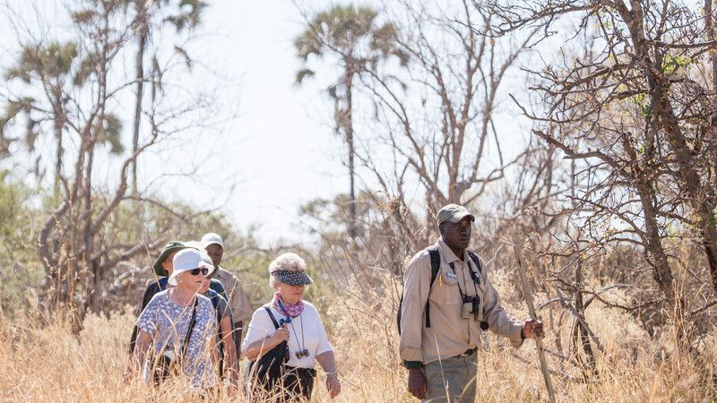A group of travellers in the bush in Botswana