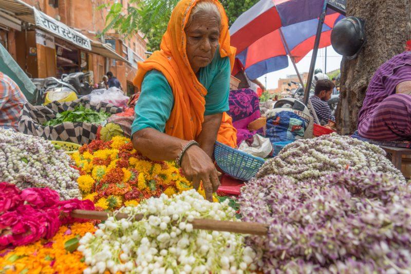 Jaipur India city guide