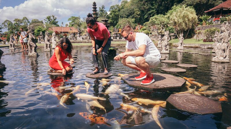 Feeding fish at Tirta Gangga water temple in Bali.