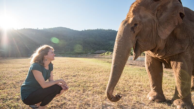 A woman crouching in front of an elephant in Thailand