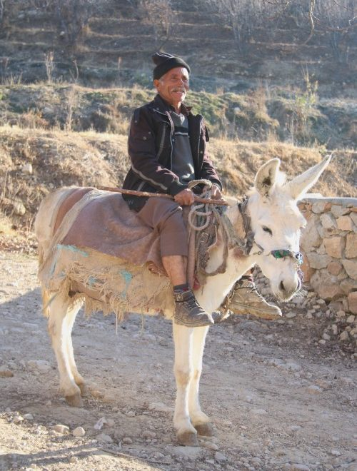A man on a donkey in Iran