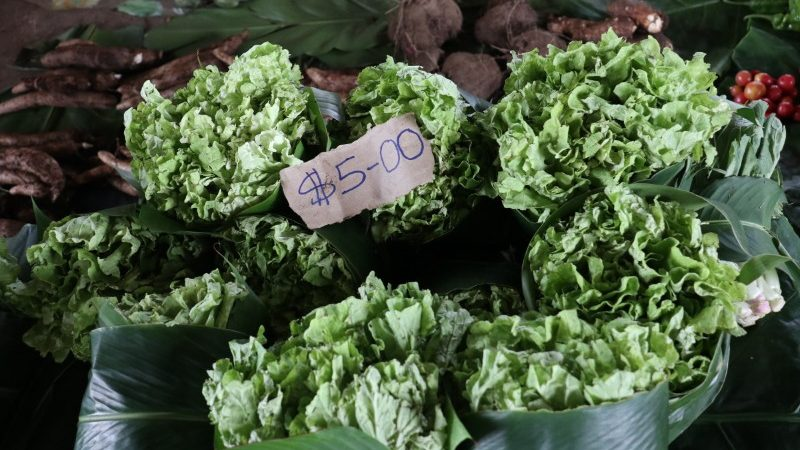 Bunches of lettuce at the market