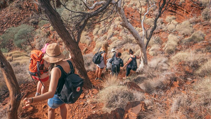 Hikers walking into a gorge