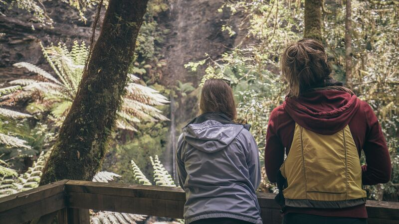 Two women look at some ferns in Tasmania