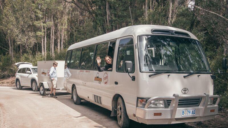 Two tour vans in Tasmania