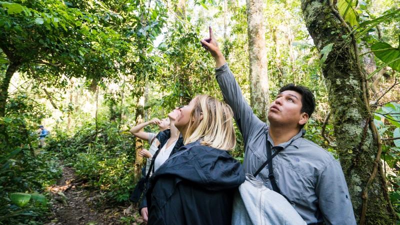Jungle walkers in the Peruvian Amazon