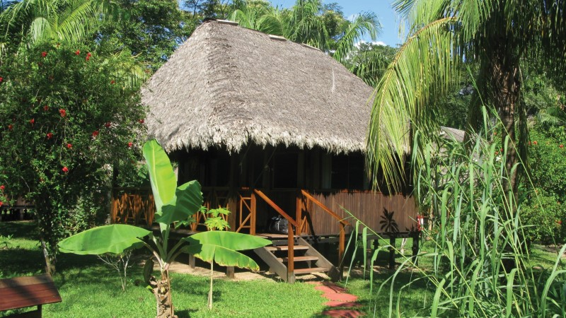 Comfortable jungle lodge accommodation in the Amazon