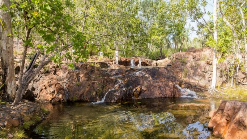 Waterhole in Litchfield National Park