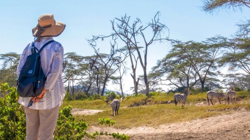 a woman standing next to some zebras on a Kenya safari