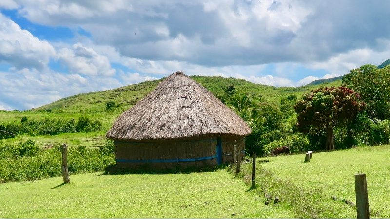 Thatched hut in green field