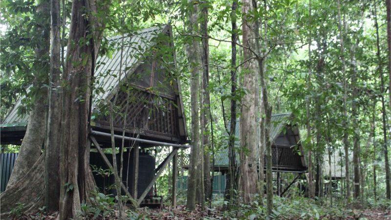 Huts in Borneo