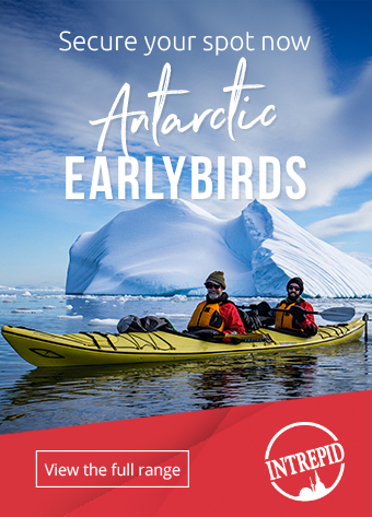 Antarctic early birds