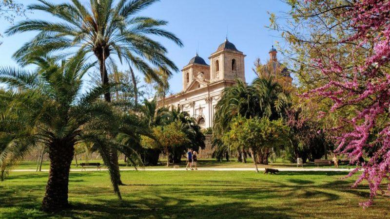 Beautiful gardens in Valencia