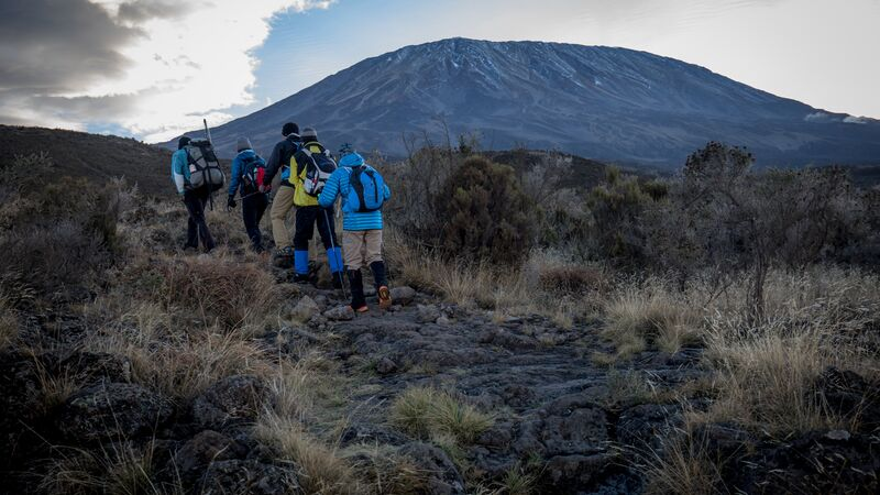 A group of hikers on their way up Mt Kilimanjaro.