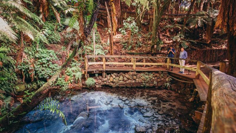 Natural springs in Rotorua