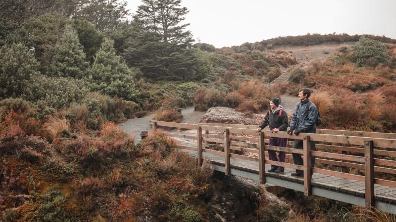 Mount Ruapehu, Taupo