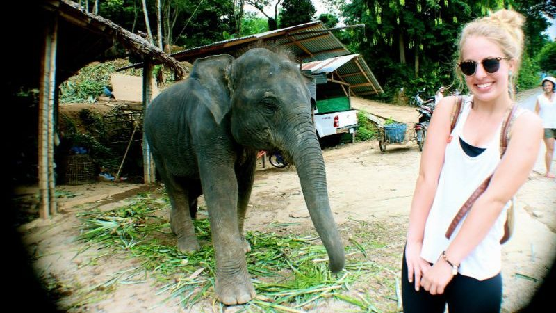 A smiling girl posing with a baby elephant