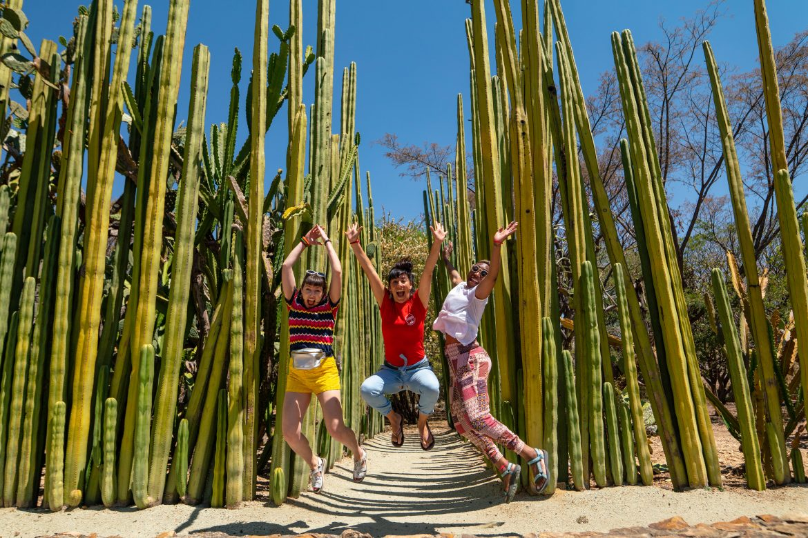 Three young woman jumping in the air in front of a field of cactus
