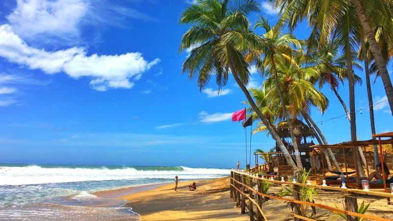 A beach, palm trees and blue sky in Sri Lanka