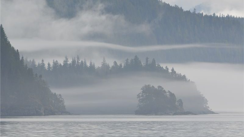 Mist hanging low above a lake in Canada