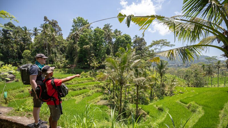 Rice terrace walk in Sideman, Bali