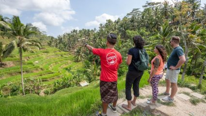 Travelling to Ubud? Here's where to yoga, eat and explore