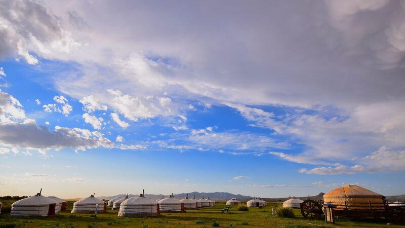 Yurts in a field in Mongolia