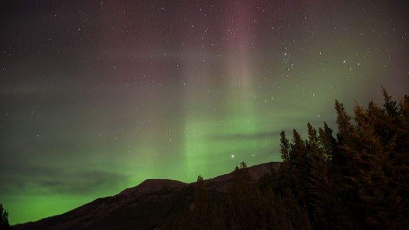 The Northern Lights in the Banff night sky.