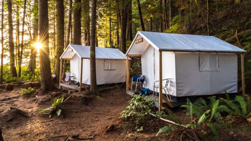 Two glamping tents in a forest in Canada