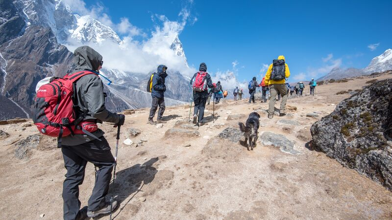 A group of hikers and a dog trekking to Everest Base Camp