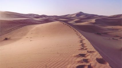 Dunes, DJs and disaster in the Sahara (with a few life lessons too)