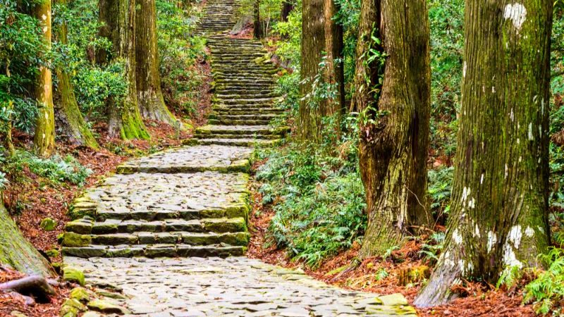 The Kumano-Kodo trek, Japan