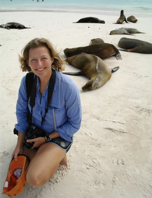A woman surrounded by sea lions in the Galapagos