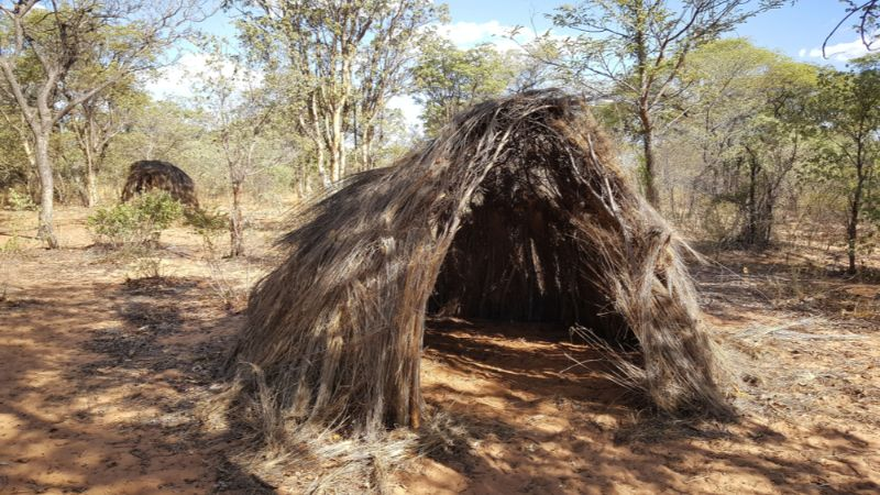 A grass hut in Namibia