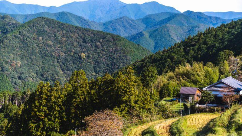 Farmland in Japan near the Kumano Kodo trail