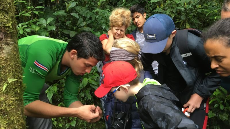 A group of kids looking at a bug in the jungle
