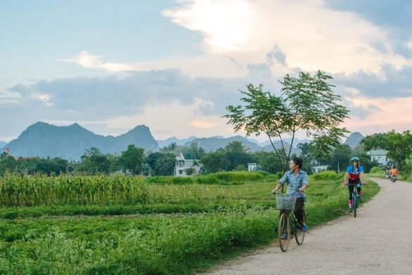 Cyclists riding past rice paddies in Mai Chau, Vietnam