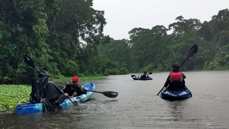 A group of people kayaking in the rain